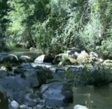 fiume Sammaro